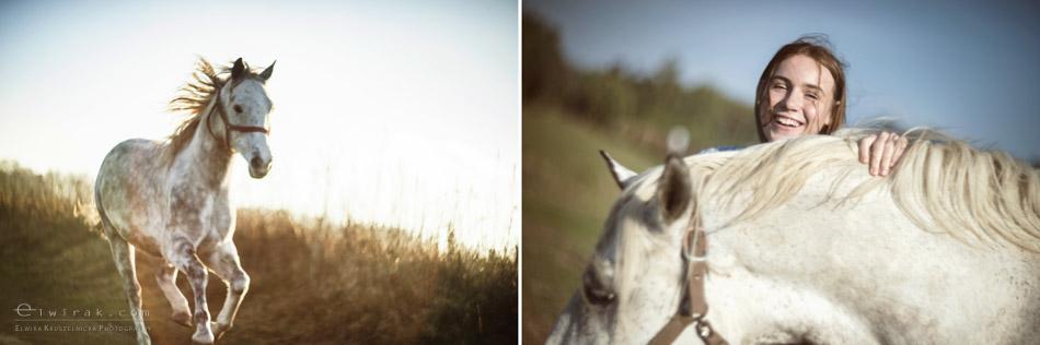 2 sesja fotograficzna plener konie Trojmiasto