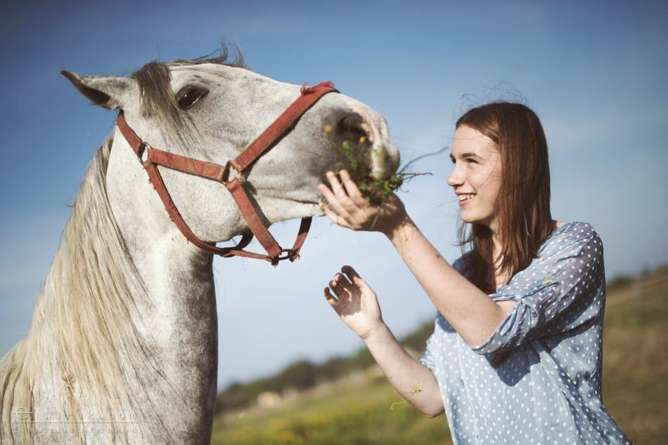 8 sesja fotograficzna plener konie Trojmiasto