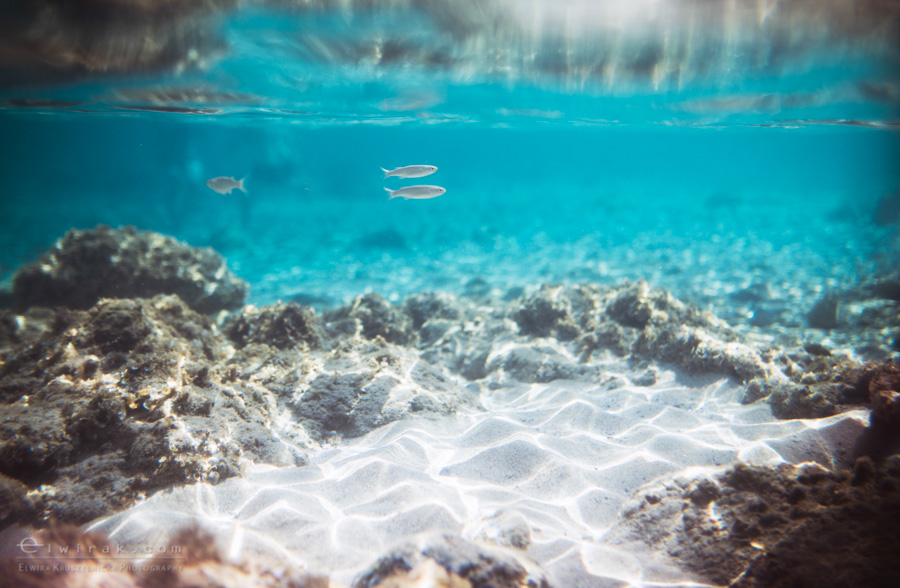 03 wakacje podwodne morze underwater paradise raj-2