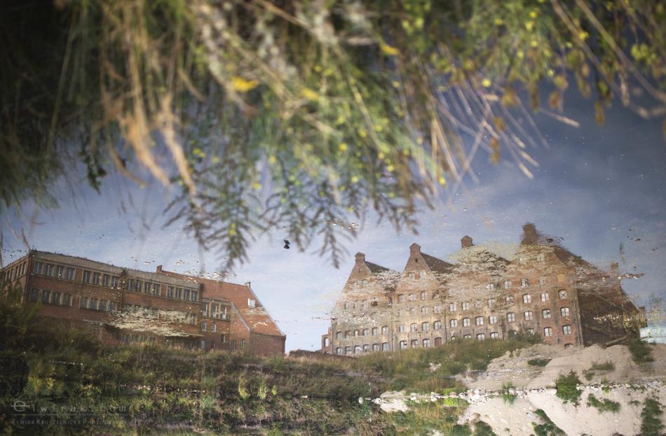11 slub wesele fotografia artystyczna Gdansk Gdynia