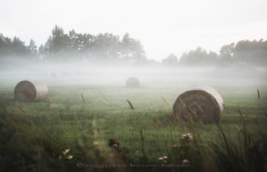 las natura zielen (10)