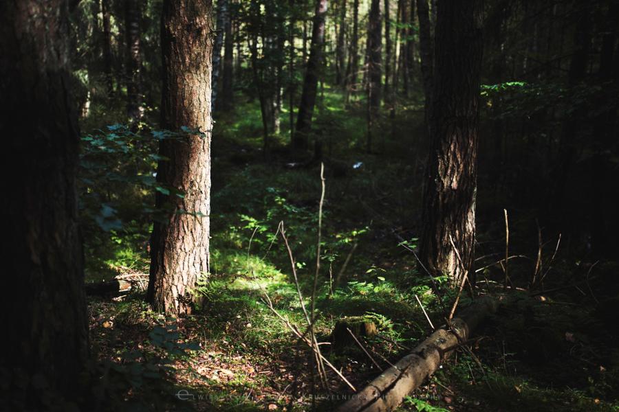 las natura zielen (26)
