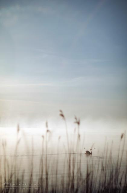 36 krajobraz nadmorski fotografia artystyczna na ściany