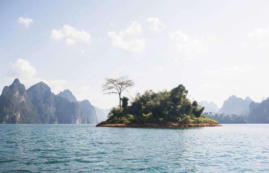 dzungla_Tajlandia_natura (1)