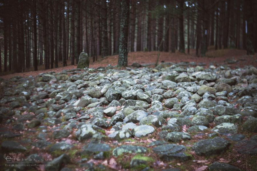 06 Wesiory Odry kamienne kregi miejsca mocy Kaszuby