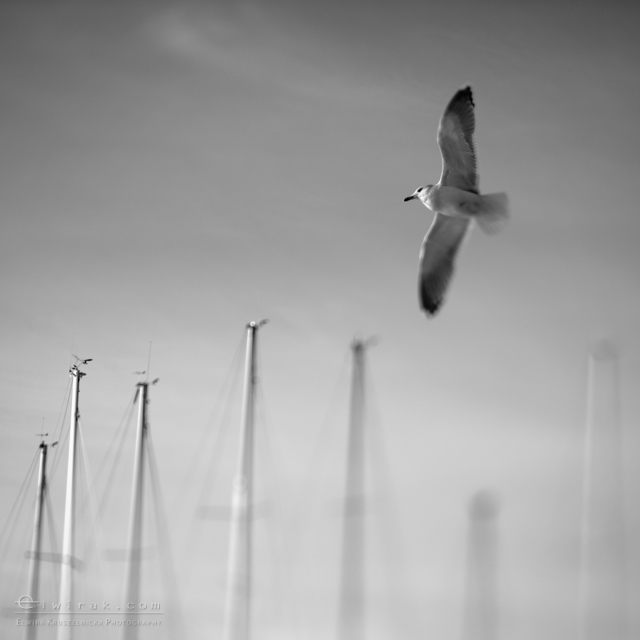 03 krajobraz nadmorski fotografia artystyczna fine art-2