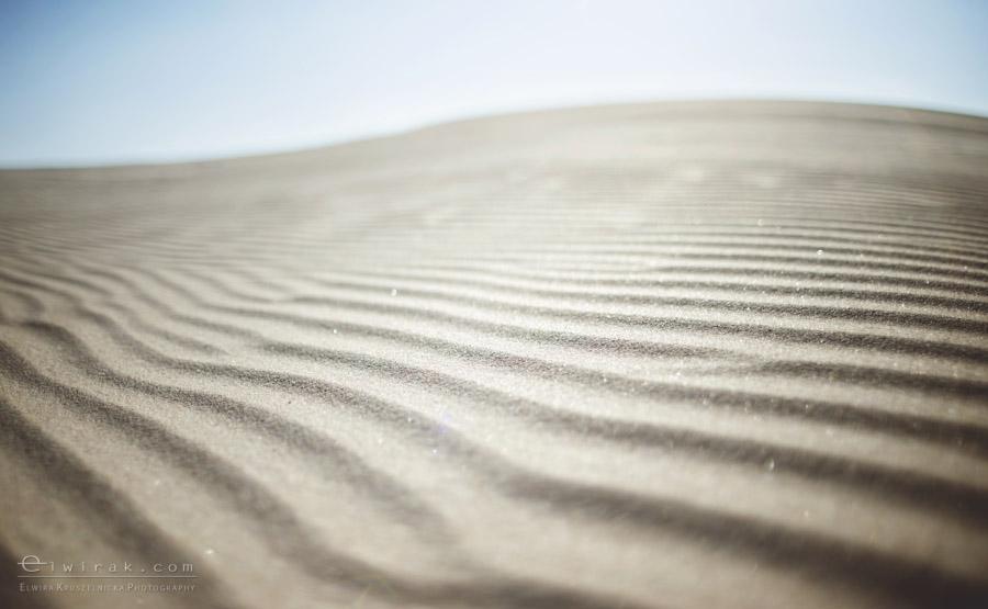 12 zdjęcia fotografie artystyczne nadmorskie trawy