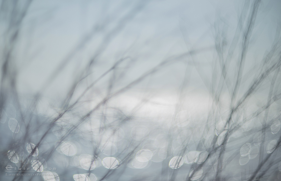 12Fotografia Artystyczna Krajobraz Nadmorski
