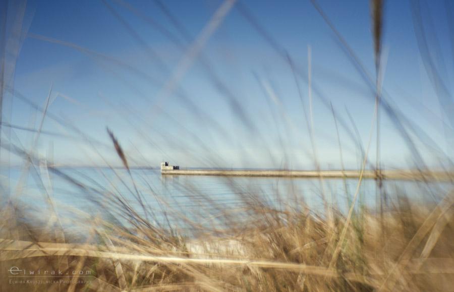 19 zdjęcia fotografie artystyczne nadmorskie trawy