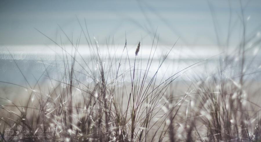 19Fotografia Artystyczna Krajobraz Nadmorski