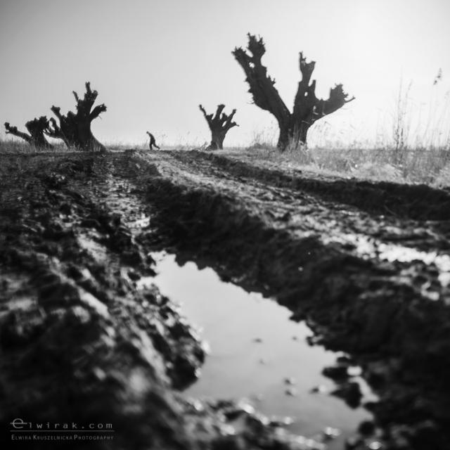 27 krajobraz nadmorski fotografia artystyczna fine art-2