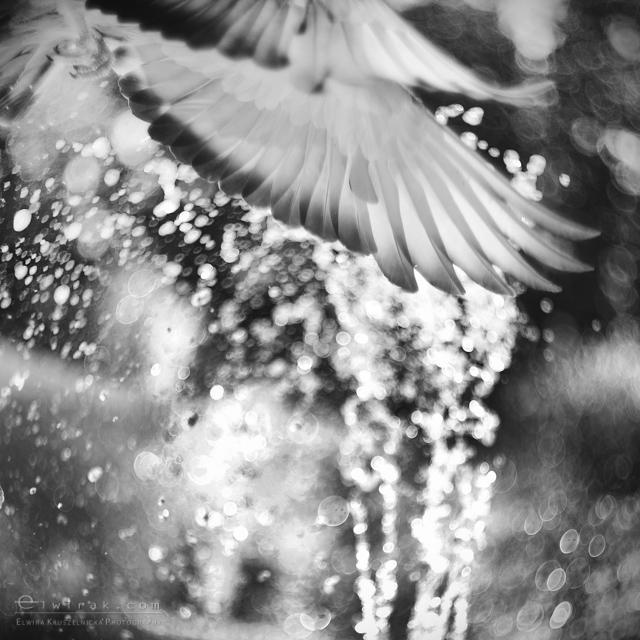 35 krajobraz nadmorski fotografia artystyczna fine art-2
