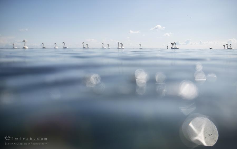 35Fotografia Artystyczna Krajobraz Nadmorski