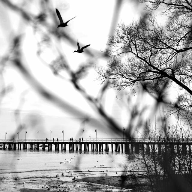 46 krajobraz nadmorski fotografia artystyczna fine art-2