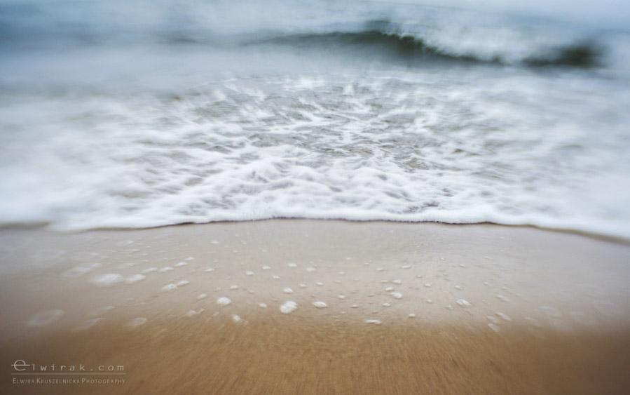 6 zdjęcia fotografie artystyczne nadmorskie trawy