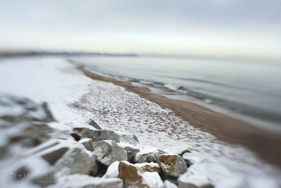 8 zdjęcia fotografie artystyczne nadmorskie trawy