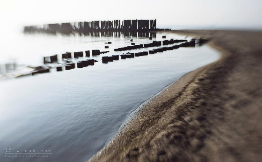 9 zdjęcia fotografie artystyczne nadmorskie trawy
