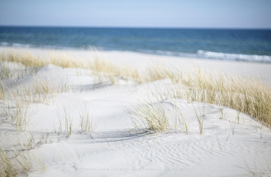 Morze Baltyk Plaza Hel Jurata Natura