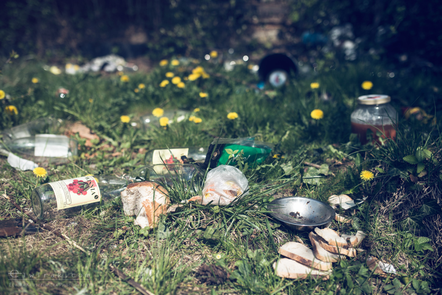 20 elwirak wystawki spring cleaning wysypisko bezdomni