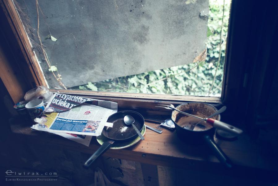 24 elwirak wystawki spring cleaning wysypisko bezdomni