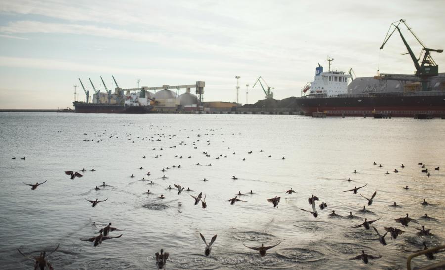 industralne wnetrza zdjecia stocznia port fabryka Gdynia (28)