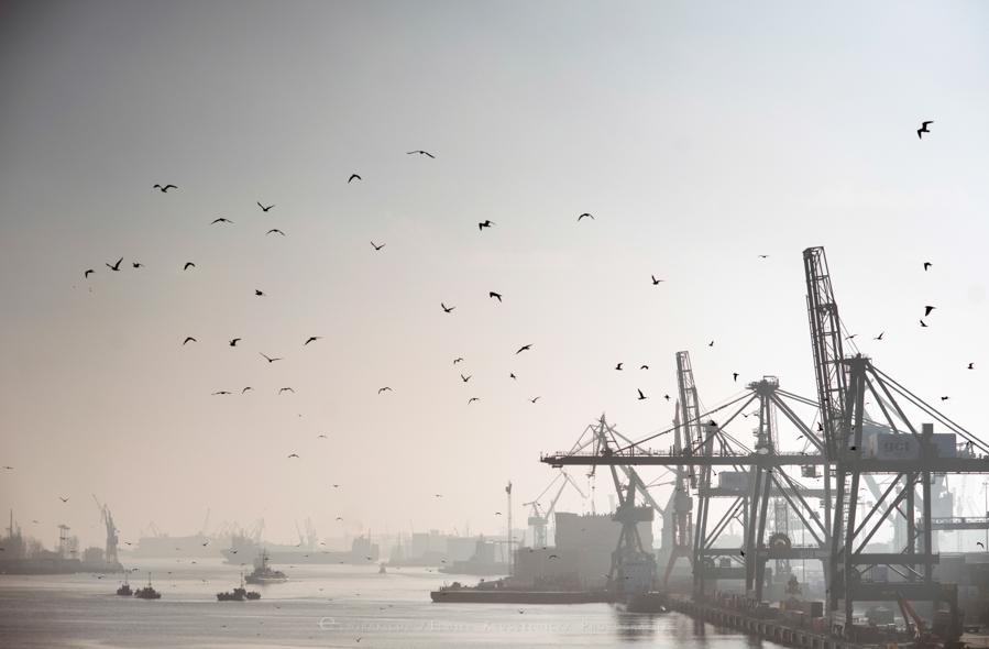 industralne wnetrza zdjecia stocznia port fabryka Gdynia (31)