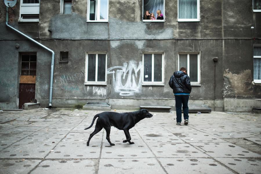 podworka miasto Trojmiasto (15)