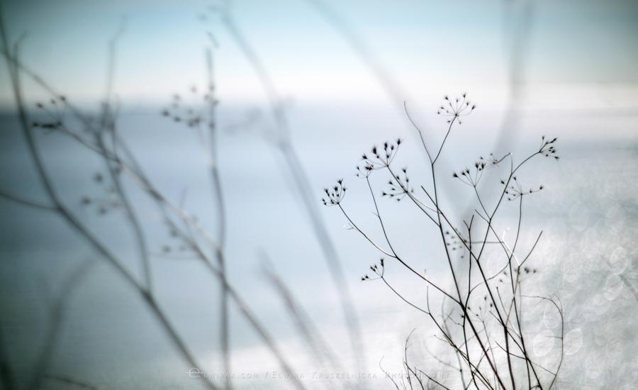 03Fotografia Artystyczna Krajobraz Nadmorski